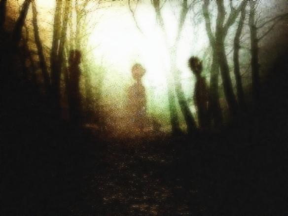 figuras-de-madera-en-bosque-deciembre-a19471159